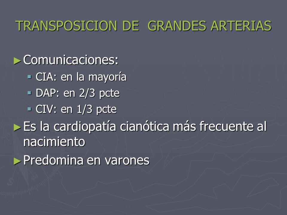 TRANSPOSICION DE GRANDES ARTERIAS Comunicaciones: Comunicaciones: CIA: en la mayoría CIA: en la mayoría DAP: en 2/3 pcte DAP: en 2/3 pcte CIV: en 1/3
