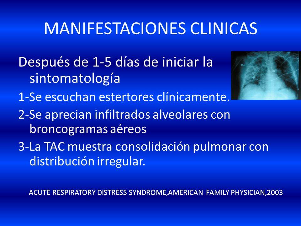 MANIFESTACIONES CLINICAS Primeras 12Primeras 12-24 hrs. Después de la lesión 1-Paciente estable(parece estarlo). 2-Signos y síntomas muy mínimos. 3-Po