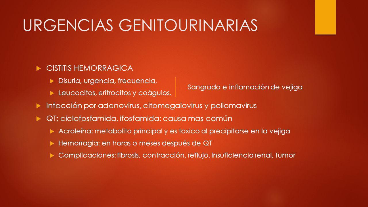 URGENCIAS GENITOURINARIAS CISTITIS HEMORRAGICA Disuria, urgencia, frecuencia, Leucocitos, eritrocitos y coágulos. Infección por adenovirus, citomegalo