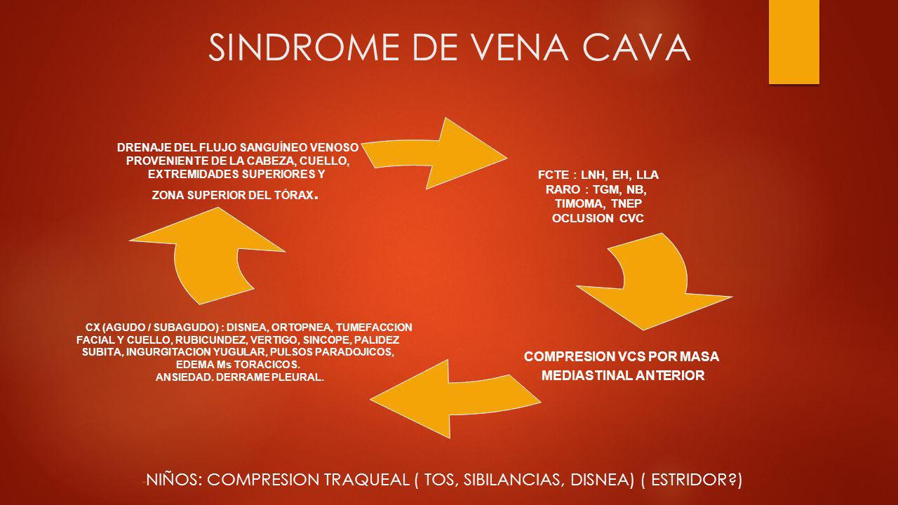 SINDROME DE VENA CAVA - NIÑOS: COMPRESION TRAQUEAL ( TOS, SIBILANCIAS, DISNEA) ( ESTRIDOR?) DRENAJE DEL FLUJO SANGUÍNEO VENOSO PROVENIENTE DE LA CABEZ