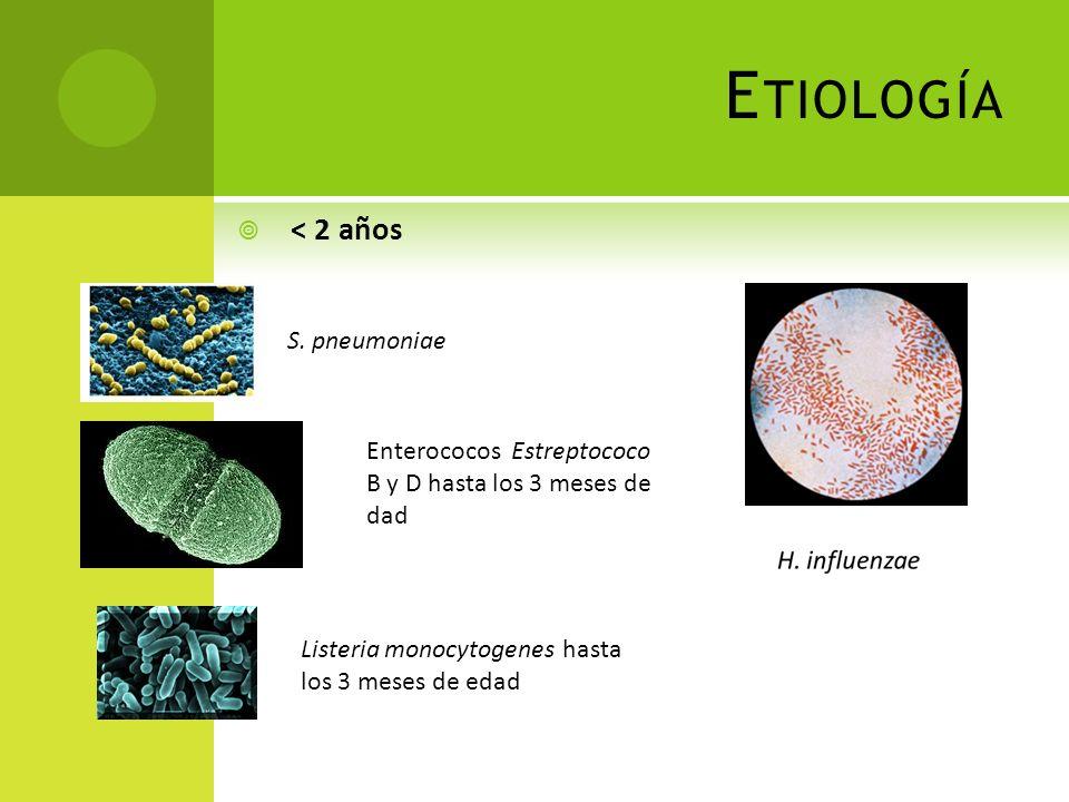 E TIOLOGÍA < 2 años Enterococos Estreptococo B y D hasta los 3 meses de dad Listeria monocytogenes hasta los 3 meses de edad S. pneumoniae