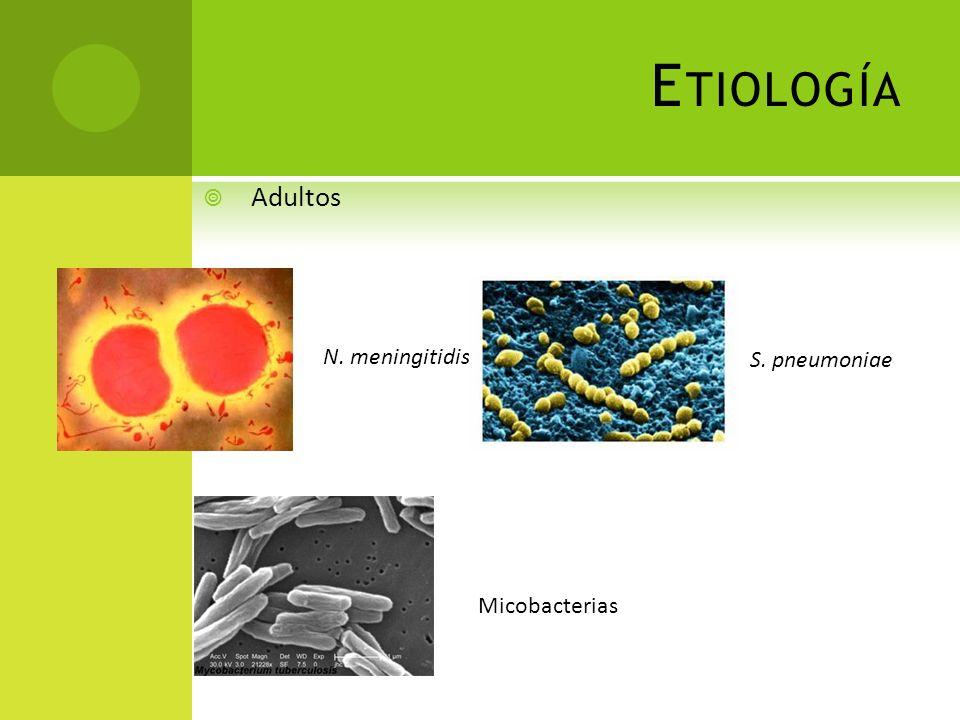 E TIOLOGÍA Adultos N. meningitidis S. pneumoniae Micobacterias