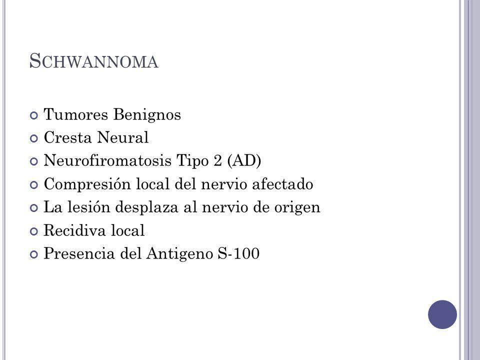 S CHWANNOMA Tumores Benignos Cresta Neural Neurofiromatosis Tipo 2 (AD) Compresión local del nervio afectado La lesión desplaza al nervio de origen Recidiva local Presencia del Antigeno S-100