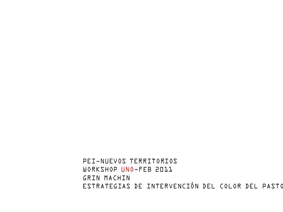 PEI-NUEVOS TERRITORIOS WORKSHOP UNO-FEB 2011 GRIN MACHIN ESTRATEGIAS DE INTERVENCIÓN DEL COLOR DEL PASTO