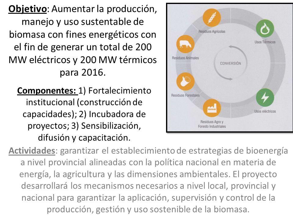 Objetivo: Aumentar la producción, manejo y uso sustentable de biomasa con fines energéticos con el fin de generar un total de 200 MW eléctricos y 200 MW térmicos para 2016.