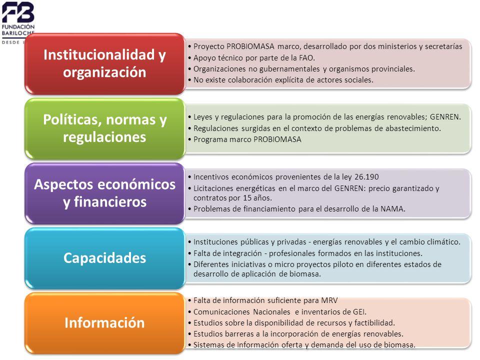 Proyecto PROBIOMASA marco, desarrollado por dos ministerios y secretarías Apoyo técnico por parte de la FAO.