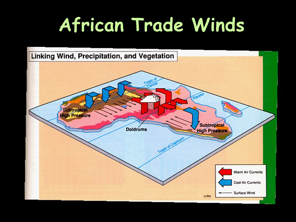 African Trade Winds