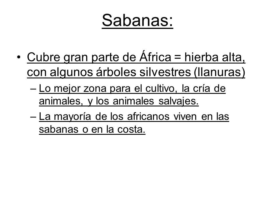 Sabanas: Cubre gran parte de África = hierba alta, con algunos árboles silvestres (llanuras) –Lo mejor zona para el cultivo, la cría de animales, y los animales salvajes.