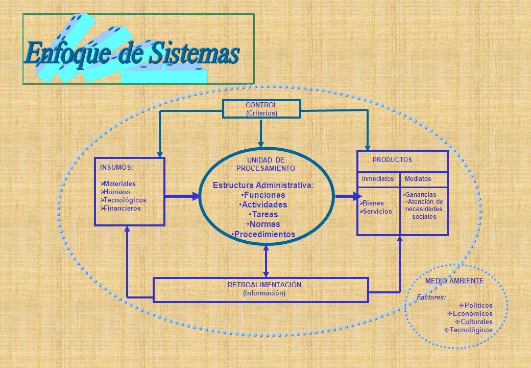INSUMOS: Materiales Humano Tecnológicos Financieros PRODUCTOS InmediatosMediatos MEDIO AMBIENTE Factores: Políticos Económicos Culturales Tecnológicos