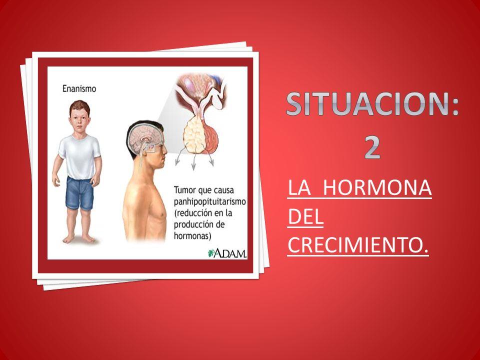 LA HORMONA DEL CRECIMIENTO.