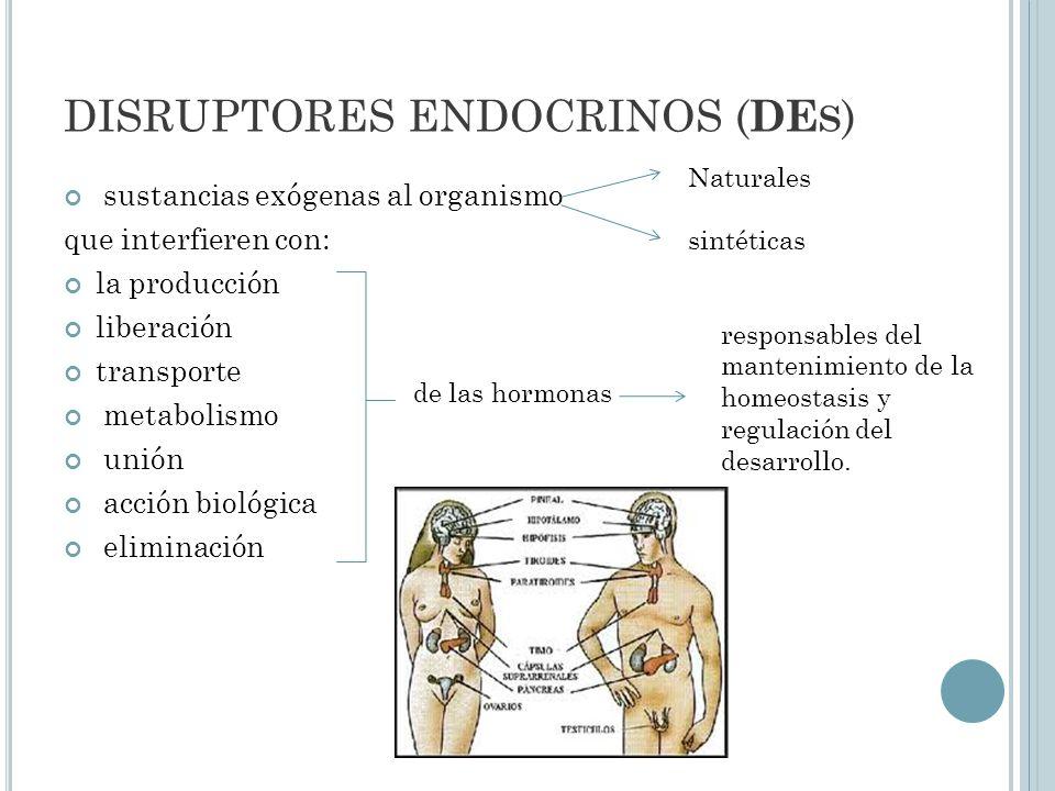 E FECTOS HORMONALES DE LOS DISRUPTORES ENDOCRINOS Disfunción tiroidea Retrasos en el crecimiento Disminución de la fertilidad Pérdida eficacia apareamiento