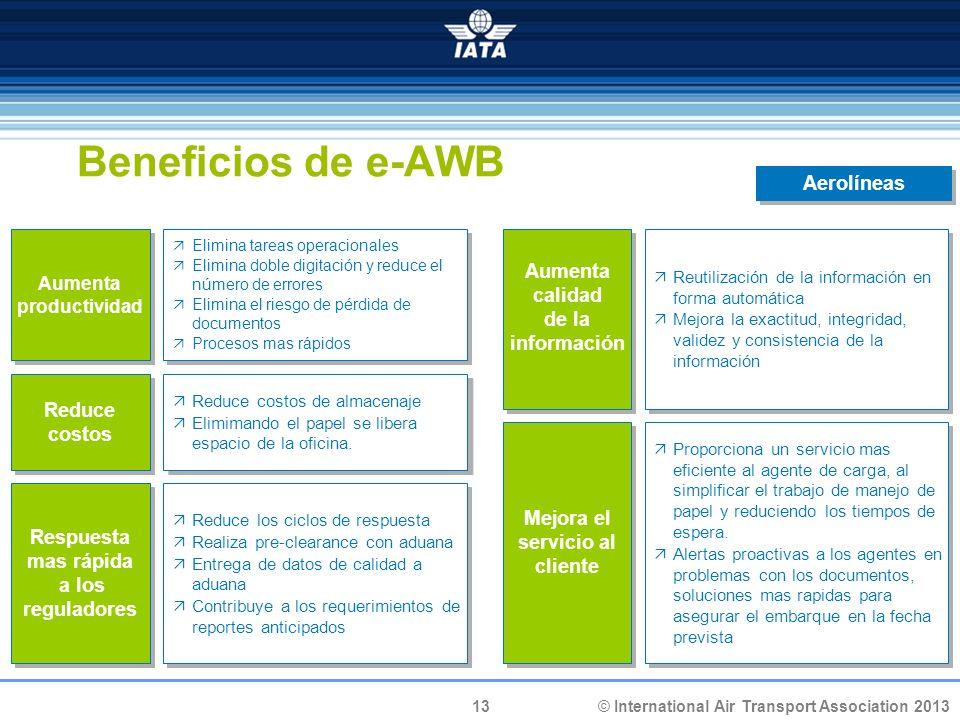 13 © International Air Transport Association 2013 Beneficios de e-AWB Aumenta productividad Elimina tareas operacionales Elimina doble digitación y re