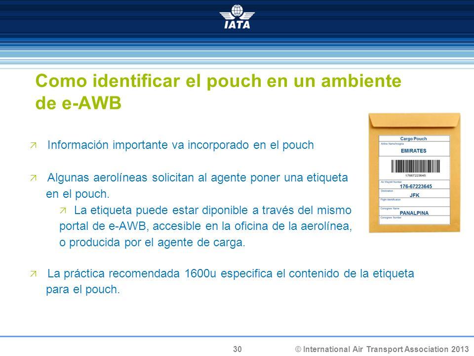 30 © International Air Transport Association 2013 Información importante va incorporado en el pouch Algunas aerolíneas solicitan al agente poner una e