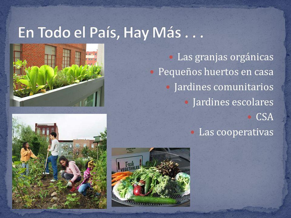 Las granjas orgánicas Pequeños huertos en casa Jardines comunitarios Jardines escolares CSA Las cooperativas