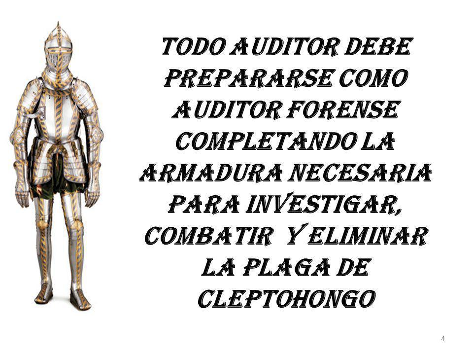 Todo auditor debe prepararse como auditor forense completando la armadura necesaria para investigar, combatir y eliminar la plaga de Cleptohongo 4