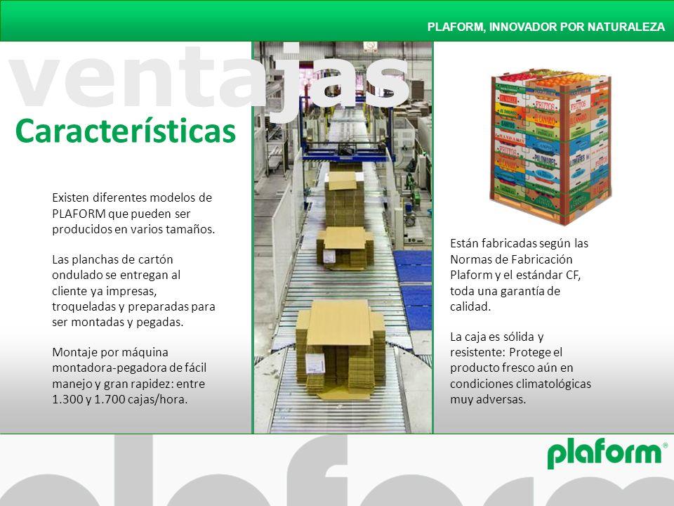 PLAFORM, INNOVADOR POR NATURALEZA Existen diferentes modelos de PLAFORM que pueden ser producidos en varios tamaños. Las planchas de cartón ondulado s