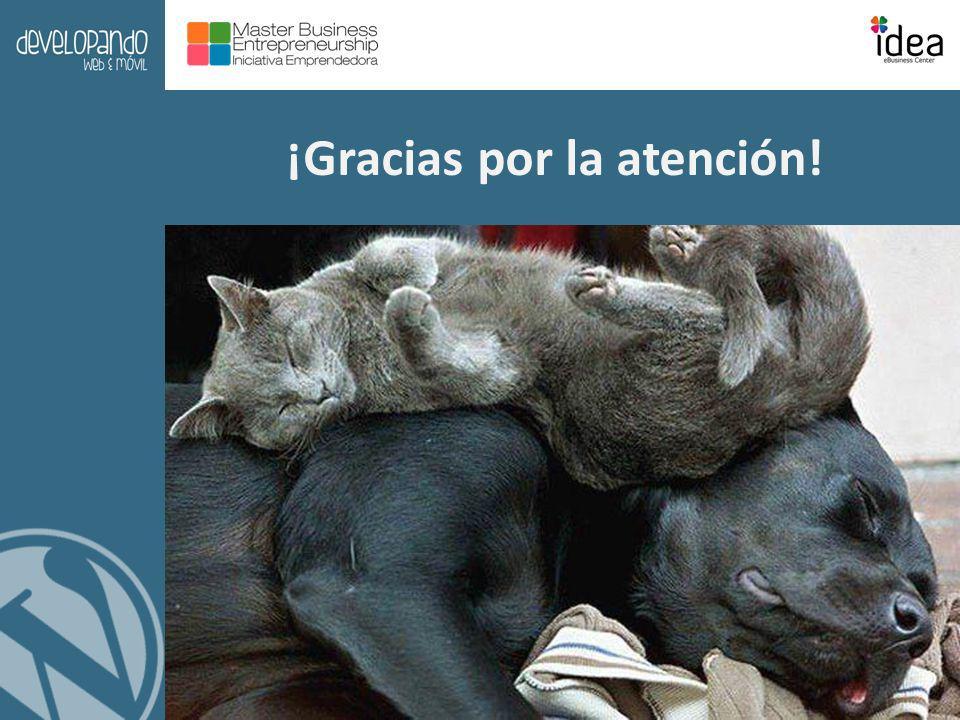 IDEA Business Center Universidad Complutense de Madrid ¡Gracias por la atención!