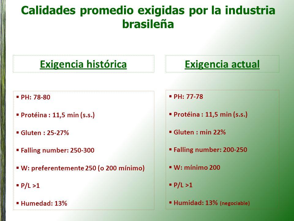 Calidades promedio exigidas por la industria brasileña Exigencia histórica PH: 78-80 Protéina : 11,5 min (s.s.) Gluten : 25-27% Falling number: 250-30