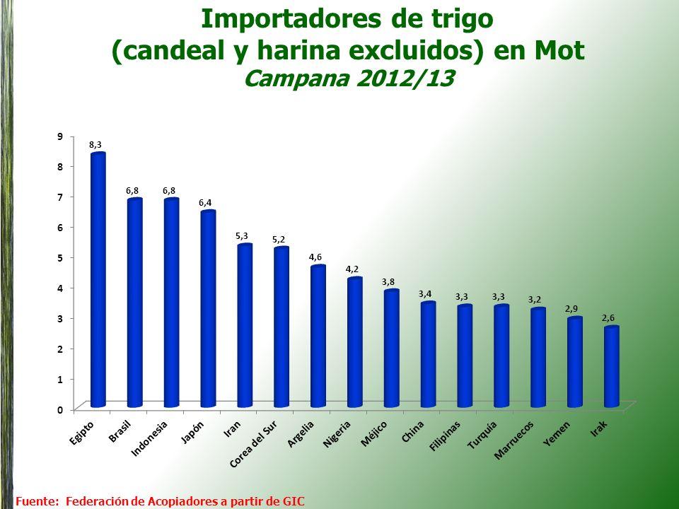 Importadores de trigo (candeal y harina excluidos) en Mot Campana 2012/13 Fuente: Federación de Acopiadores a partir de GIC