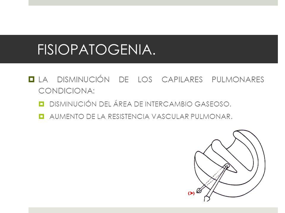 FISIOPATOGENIA. LA DISMINUCIÓN DE LOS CAPILARES PULMONARES CONDICIONA: DISMINUCIÓN DEL ÁREA DE INTERCAMBIO GASEOSO. AUMENTO DE LA RESISTENCIA VASCULAR