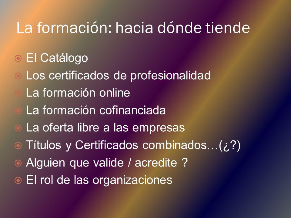 La formación: hacia dónde tiende El Catálogo Los certificados de profesionalidad La formación online La formación cofinanciada La oferta libre a las empresas Títulos y Certificados combinados…(¿?) Alguien que valide / acredite .