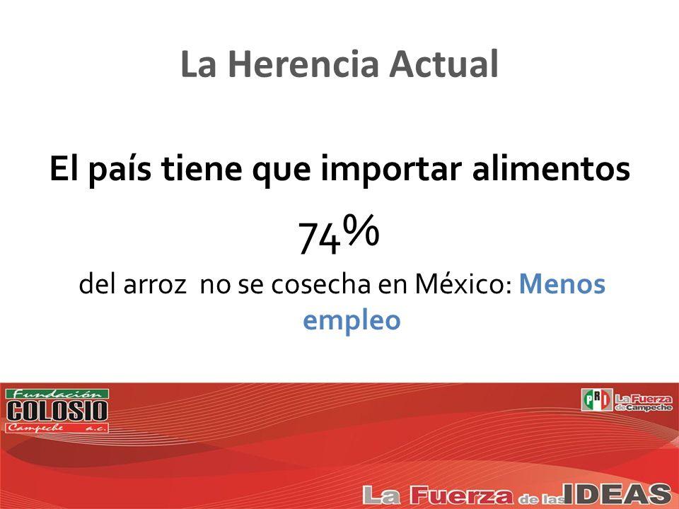 El país tiene que importar alimentos 74% del arroz no se cosecha en México: Menos empleo La Herencia Actual