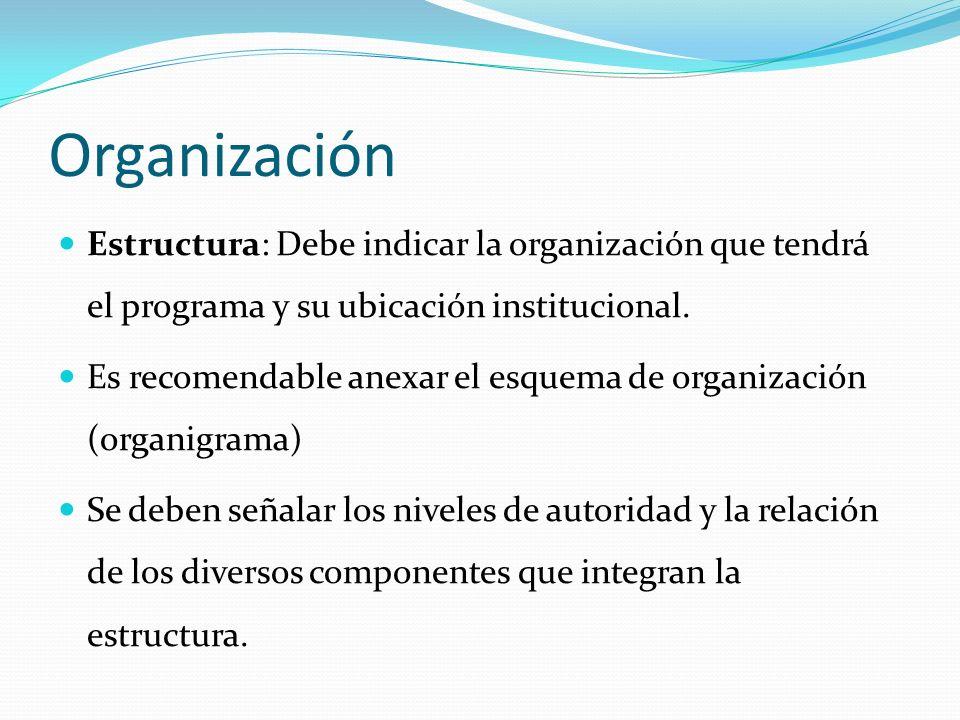Organización Estructura: Debe indicar la organización que tendrá el programa y su ubicación institucional. Es recomendable anexar el esquema de organi