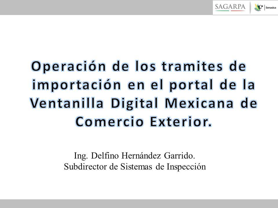 Ing. Delfino Hernández Garrido. Subdirector de Sistemas de Inspección