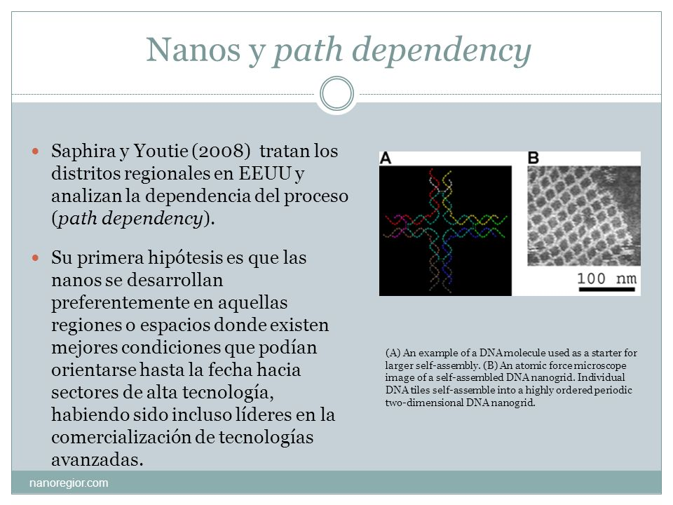 Nanos y path dependency Saphira y Youtie (2008) tratan los distritos regionales en EEUU y analizan la dependencia del proceso (path dependency). Su pr