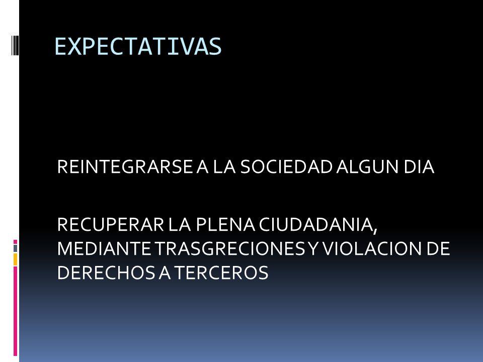 EXPECTATIVAS REINTEGRARSE A LA SOCIEDAD ALGUN DIA RECUPERAR LA PLENA CIUDADANIA, MEDIANTE TRASGRECIONES Y VIOLACION DE DERECHOS A TERCEROS