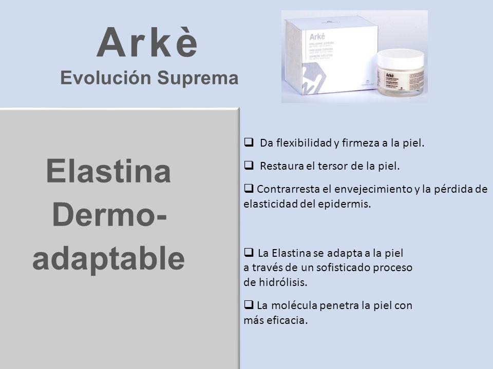 Elastina Dermo- adaptable Da flexibilidad y firmeza a la piel. Restaura el tersor de la piel. Contrarresta el envejecimiento y la pérdida de elasticid