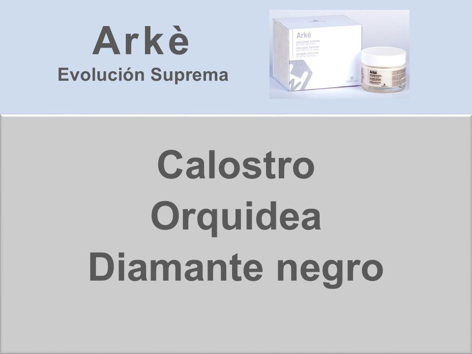 Calostro Orquidea Diamante negro Arkè Evolución Suprema