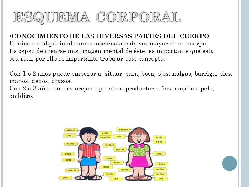 CONOCIMIENTO DE LAS DIVERSAS PARTES DEL CUERPO El niño va adquiriendo una consciencia cada vez mayor de su cuerpo.