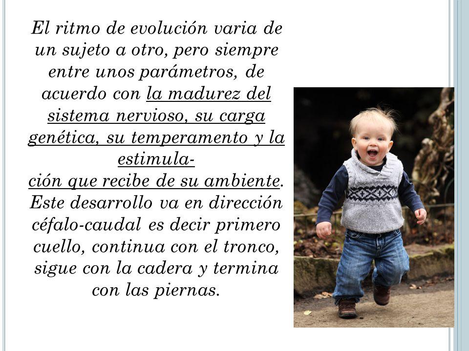 El ritmo de evolución varia de un sujeto a otro, pero siempre entre unos parámetros, de acuerdo con la madurez del sistema nervioso, su carga genética