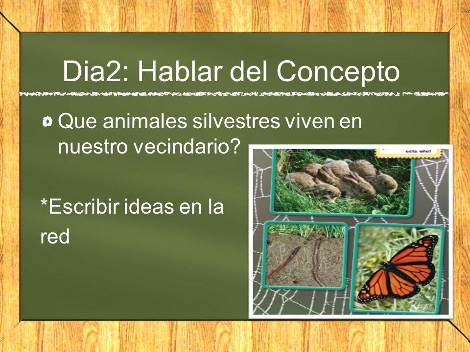 Dia2: Hablar del Concepto Que animales silvestres viven en nuestro vecindario? *Escribir ideas en la red