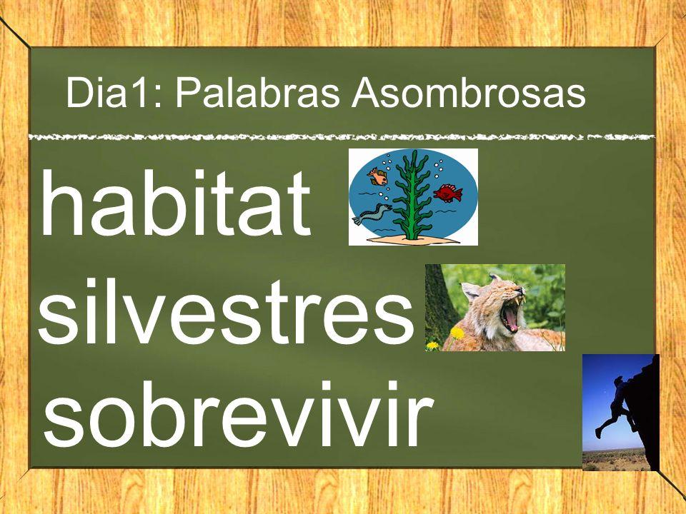 Dia1: Palabras Asombrosas habitat silvestres sobrevivir