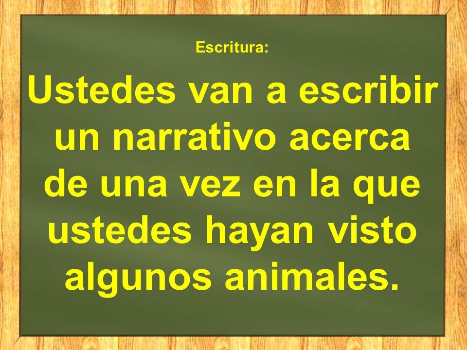 Escritura: Ustedes van a escribir un narrativo acerca de una vez en la que ustedes hayan visto algunos animales.