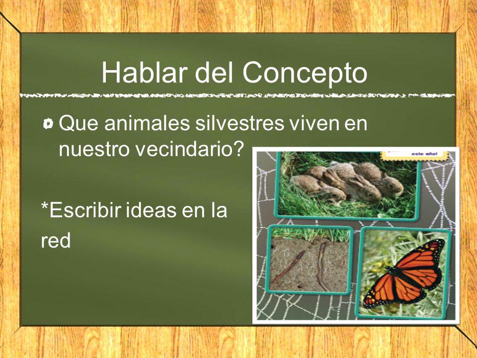 Hablar del Concepto Que animales silvestres viven en nuestro vecindario? *Escribir ideas en la red