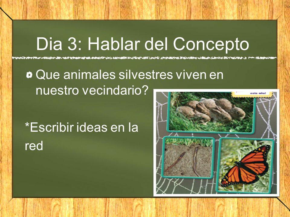 Dia 3: Hablar del Concepto Que animales silvestres viven en nuestro vecindario? *Escribir ideas en la red