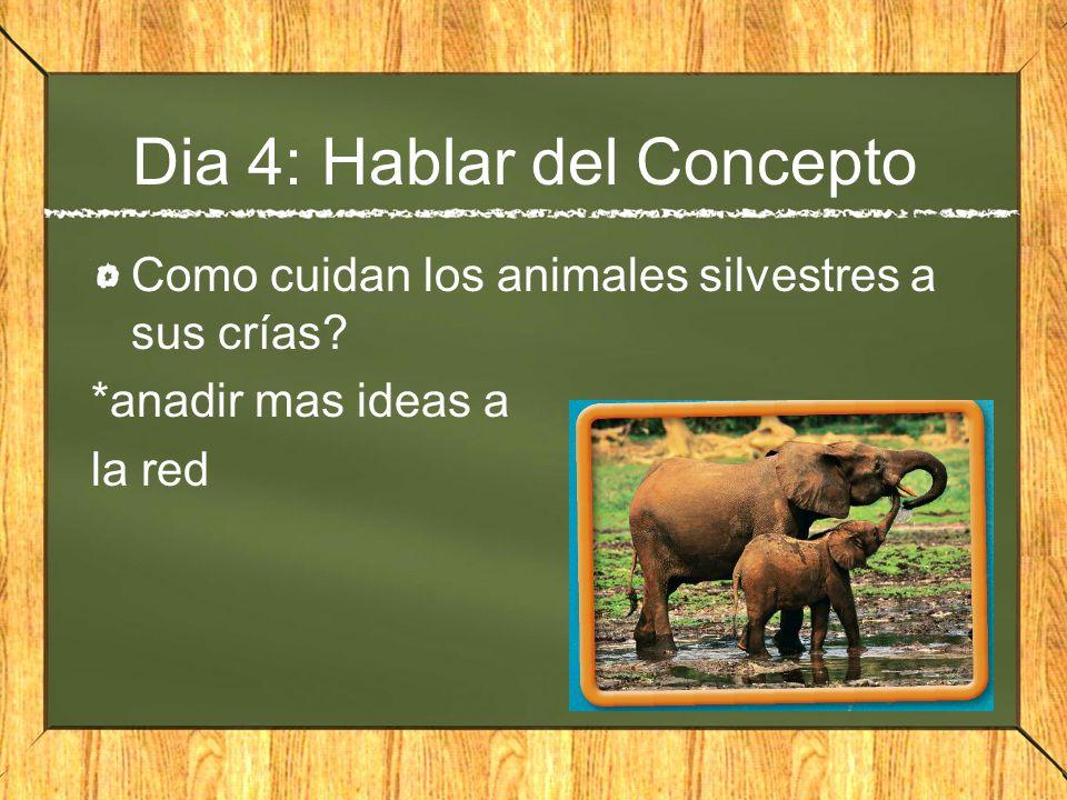 Dia 4: Hablar del Concepto Como cuidan los animales silvestres a sus crías? *anadir mas ideas a la red