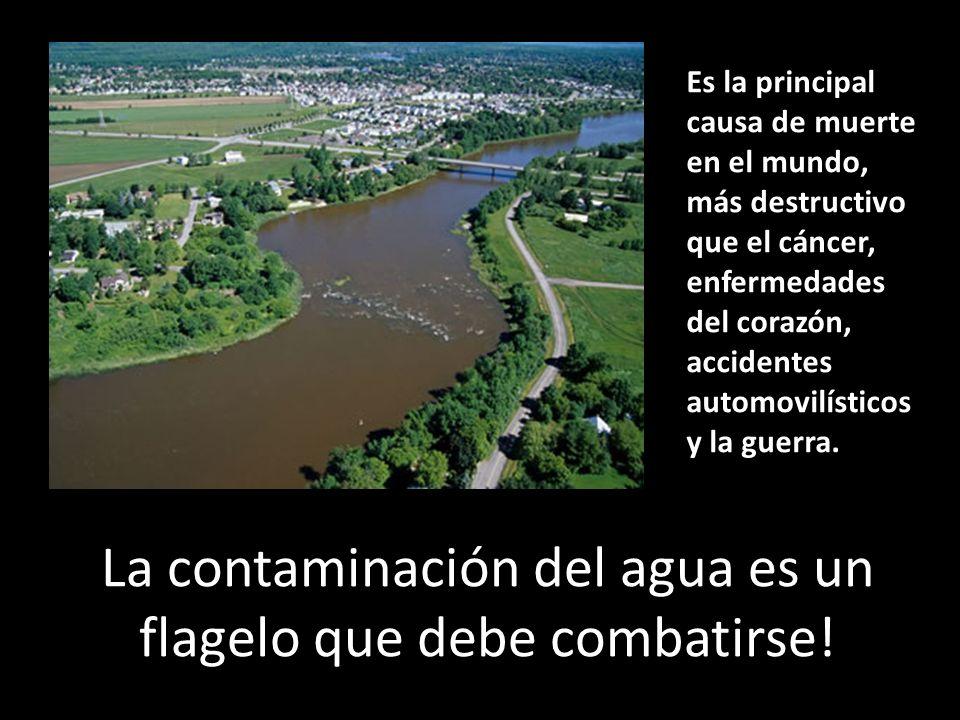 Un desperdicio tóxico equivalente al peso total de todos los seres humanos en la Tierra se descarga diariamente a los ríos de nuestro planeta...