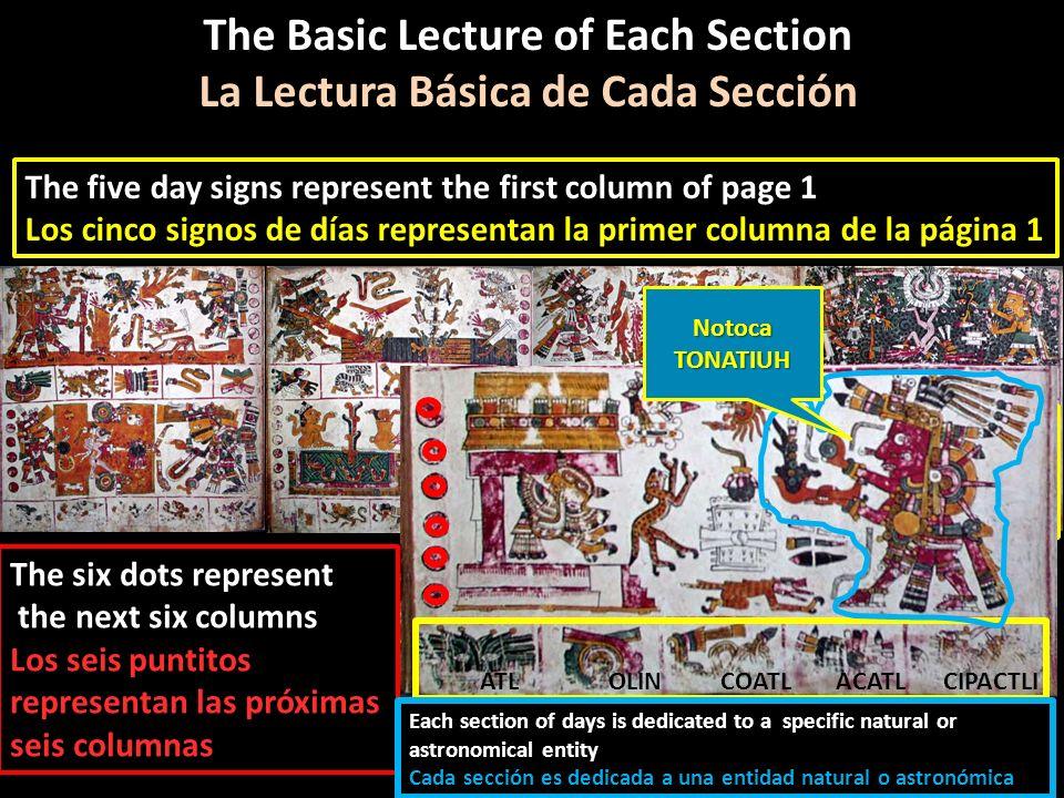 Lets use the first section as an example Tomemos la primera sección como ejemplo The Basic Lecture of Each Section La Lectura Básica de Cada Sección T
