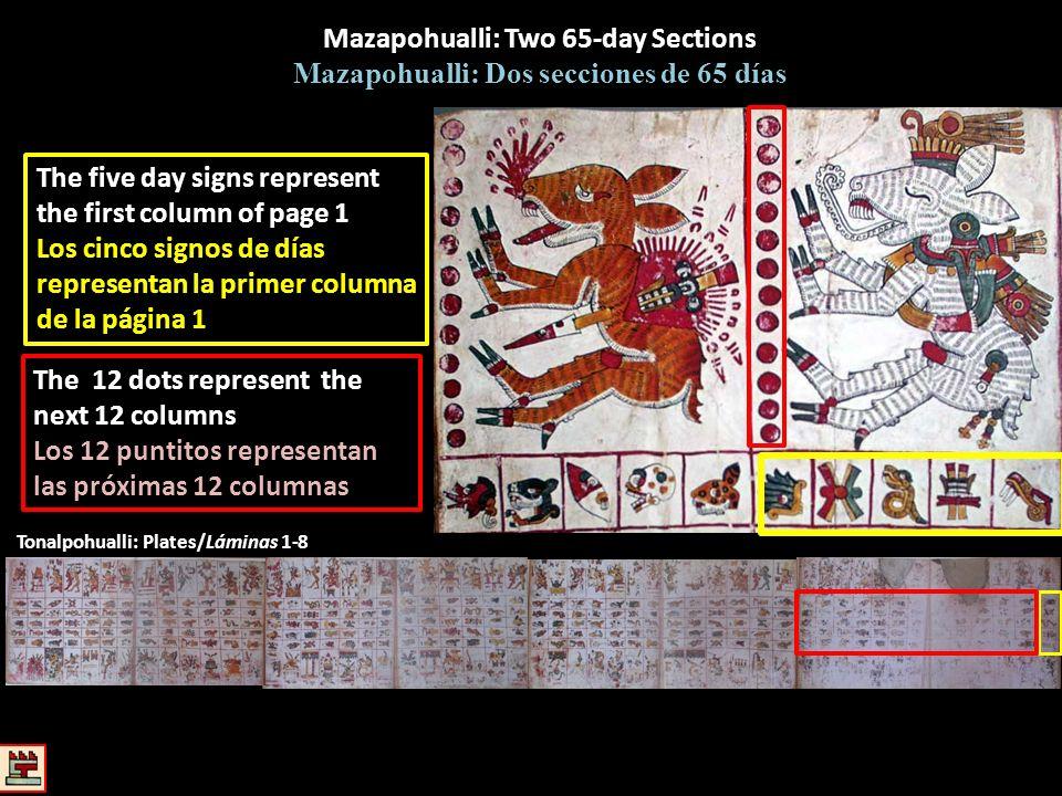 Tonalpohualli: Plates/Láminas 1-8 Mazapohualli: Two 65-day Sections Mazapohualli: Dos secciones de 65 días The five day signs represent the first colu