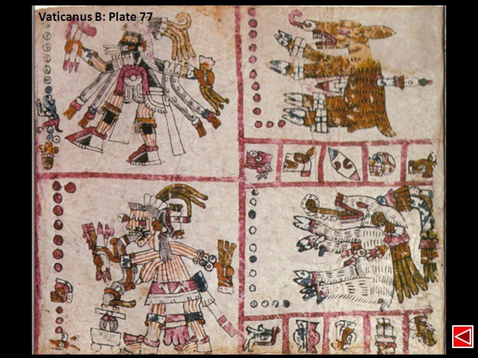 Vaticanus B: Plate 77