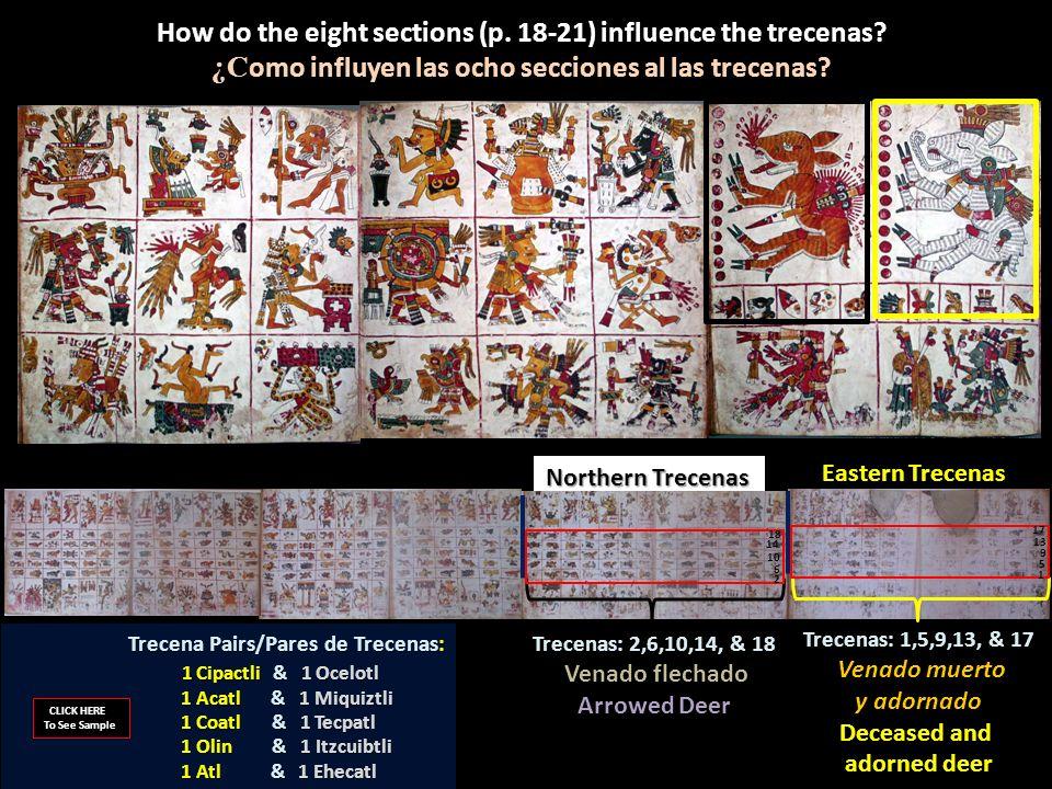 Northern Trecenas Trecenas: 1,5,9,13, & 17 Venado muerto Venado muerto y adornado Deceased and adorned deer How do the eight sections (p. 18-21) influ