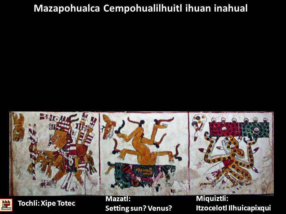 Mazapohualca Cempohualilhuitl ihuan inahual Miquiztli: Itzocelotl Ilhuicapixqui Mazatl: Setting sun? Venus? Tochli: Xipe Totec