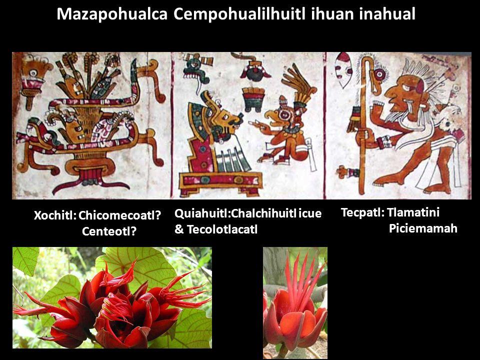 Mazapohualca Cempohualilhuitl ihuan inahual Tecpatl: Tlamatini Piciemamah Quiahuitl:Chalchihuitl icue & Tecolotlacatl Xochitl: Chicomecoatl? Centeotl?