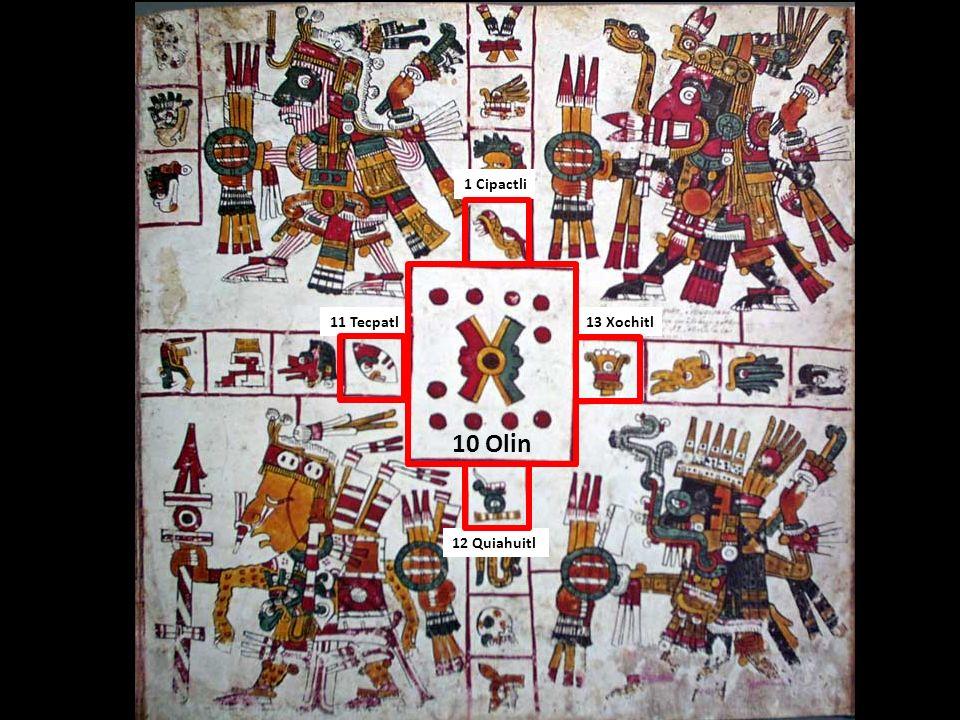 13 Xochitl11 Tecpatl 12 Quiahuitl 10 Olin 1 Cipactli