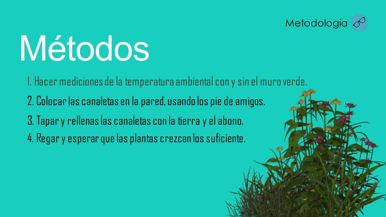 1. Hacer mediciones de la temperatura ambiental con y sin el muro verde. Métodos 2. Colocar las canaletas en la pared, usando los pie de amigos. 3. Ta
