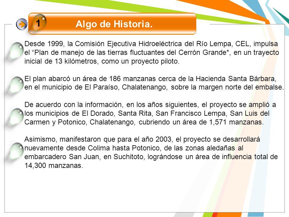 Algo de Historia. 1 Desde 1999, la Comisión Ejecutiva Hidroeléctrica del Río Lempa, CEL, impulsa el Plan de manejo de las tierras fluctuantes del Cerr